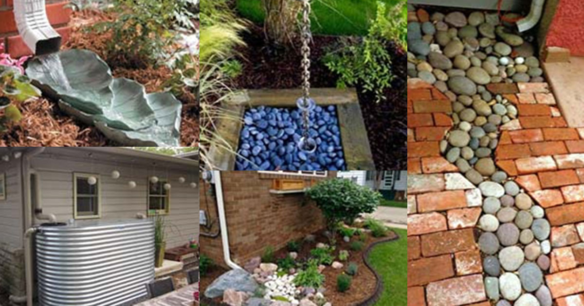 20 Of The Greatest DIY Ideas For Creating A Decorative Downspout Landscape