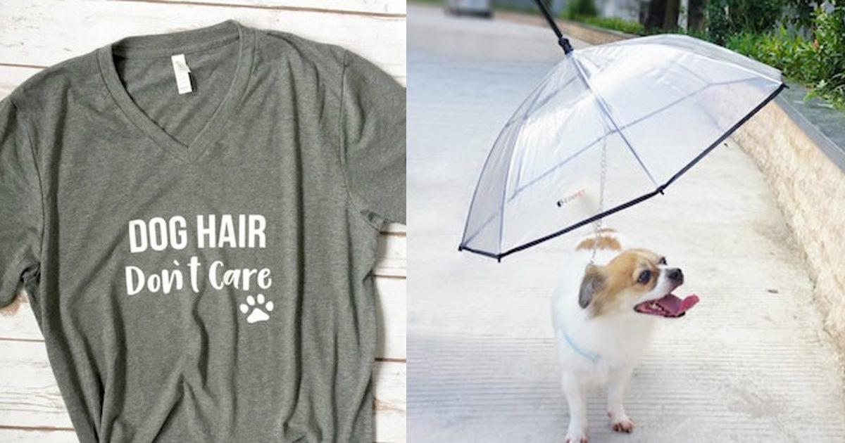 8 Dinge für Hundebesitzer die gerne Zeit mit ihren Hunden verbringen